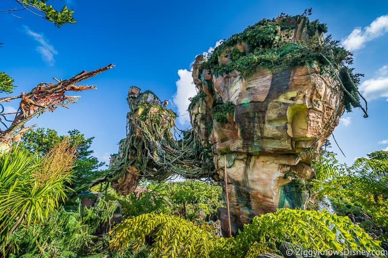 Disney's Pandora: The World of Avatar in Animal Kingdom