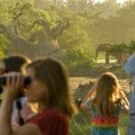 New Elephant Tour in Disney's Animal Kingdom