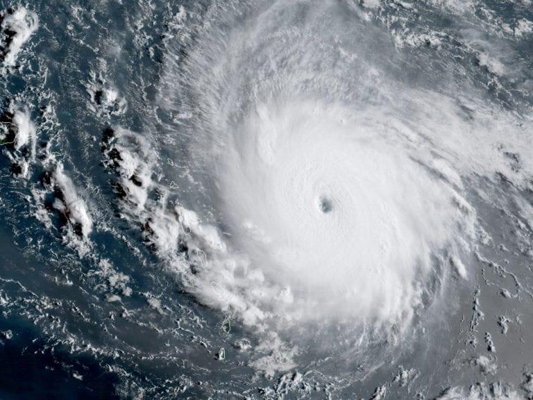 hurricane irma and Walt Disney World
