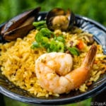 Spain Review 2017 Epcot Food and Wine Festival Spanish paella