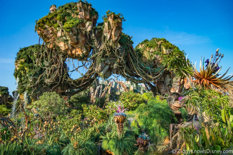Animal Kingdom Now #2 Most Popular Park in Walt Disney World