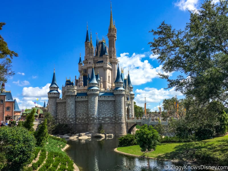 Florida Residents Discover Disney Pass