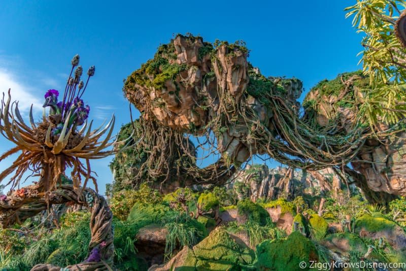 Pandora: The World of Avatar Named One of World's Top 100 Destinations by TIME Magazine