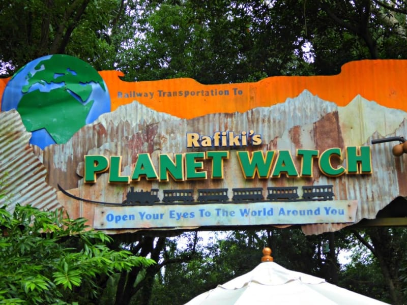 Animal Kingdom's Rafiki's Planet Watch Closing Permanently in October.  New Land Coming?