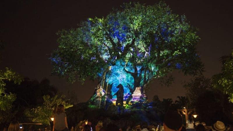 Tree of Life Awakenings Animal Kingdom