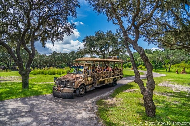 Image of: Disney World The Mom Is Beautiful Masai Giraffe Named Mara And She Went Into Labor Right As The Kilimanjaro Safaris Vehicles Were Passing By In The Middle Of The Ziggy Knows Disney Baby Boy Giraffe Born On Kilimanjaro Safaris In Disneys Animal Kingdom