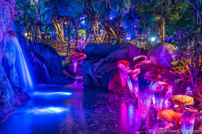 Bioluminescent Forest at night in Pandora the World of Avatar