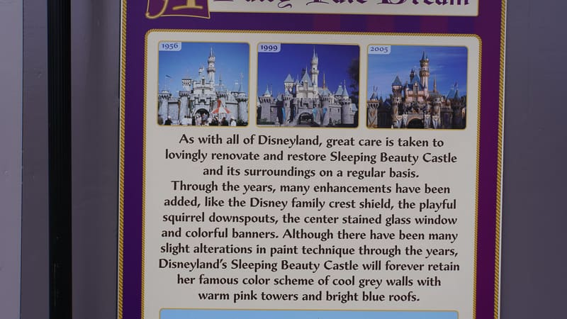Sleeping Beauty Castle in Disneyland board
