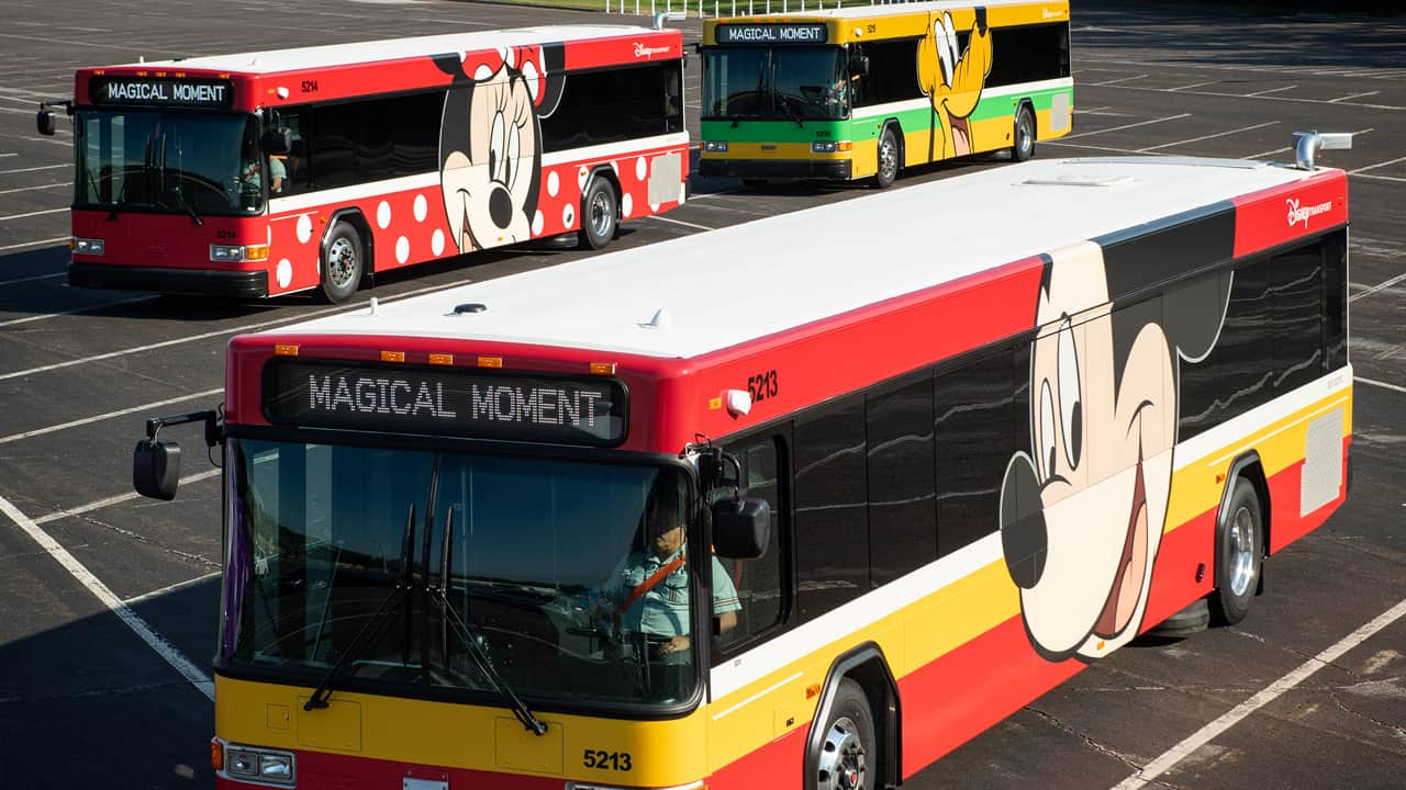 New Disney World Buses Disney Characters