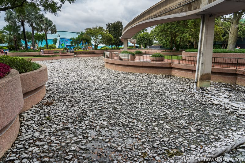 Hurricane Dorian Preparations in Walt Disney World Epcot pool drained future world 2
