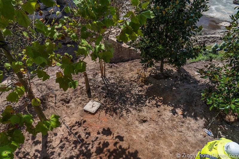 landscaping for magic kingdom cinderella castle walkway update august 2019
