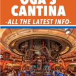 Everything to Know about Oga's Cantina