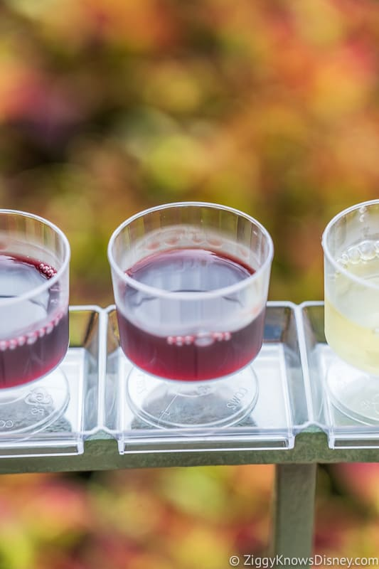 Wine Flight 2 Appleseed Orchard Epcot Food and Wine Festival 2019