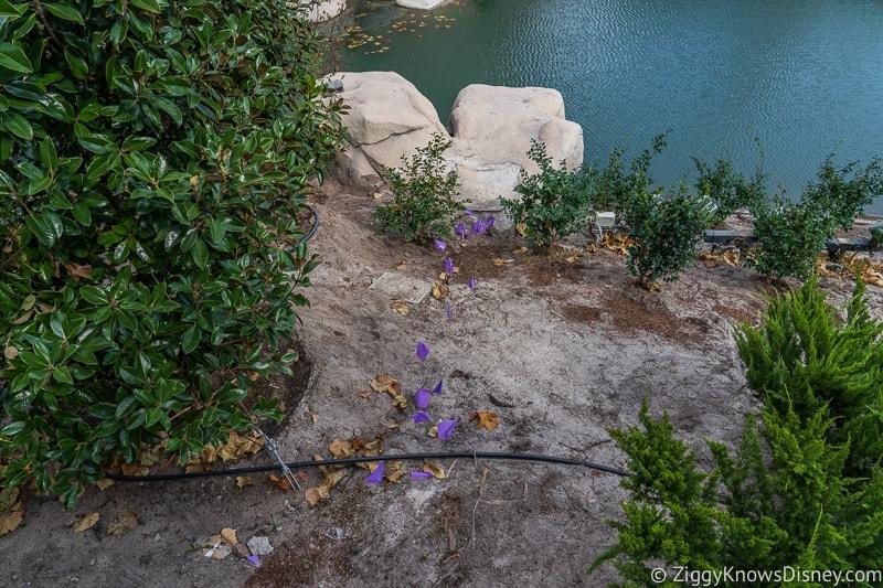 Cinderella Castle Moat Filled in Magic Kingdom flower beds