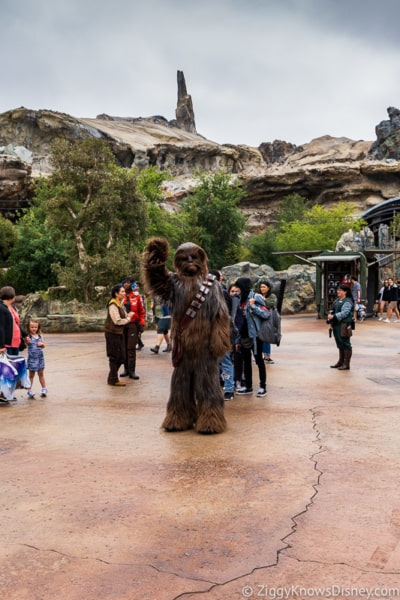 Chewbacca waving at guests in Star Wars: Galaxy's Edge
