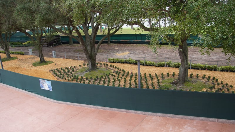 Epcot Entrance Construction Updates January 2020 landscaping at West side bag check