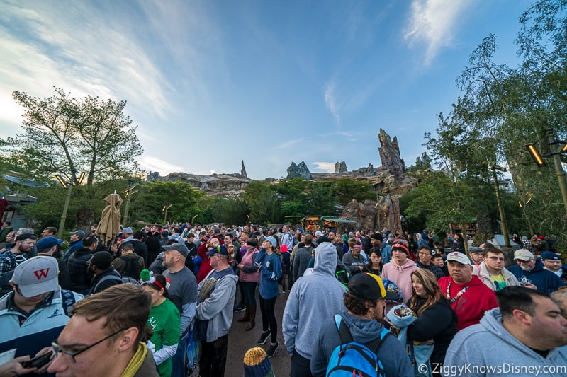 Hollywood Studios crowds for rope drop