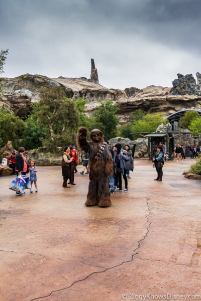 Disneyland Closure Galaxy's Edge