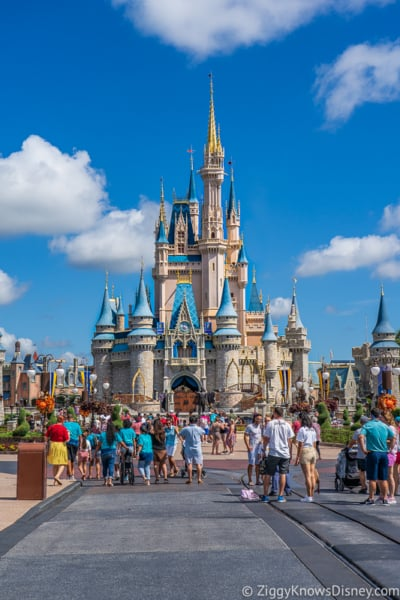 Disney World Closure Info