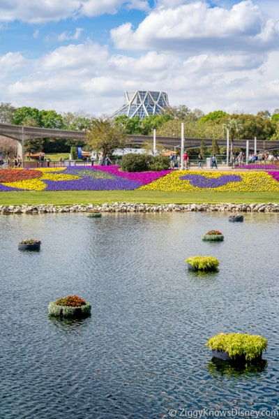 water and flowers near The Land Epcot Flower and Garden Festival