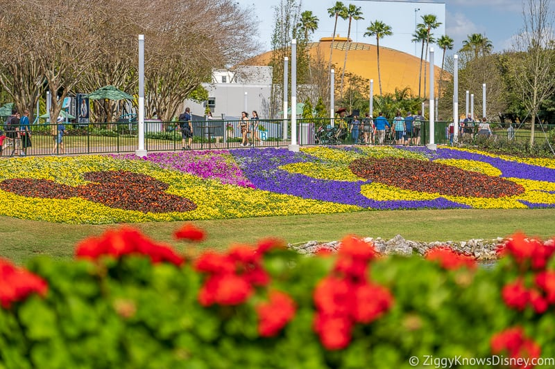 Mickey Mouse flower bed and Wonders of Life Epcot Flower and Garden Festival