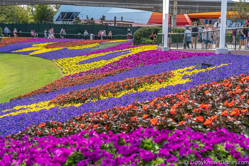 multi-colored flower beds Epcot Flower and Garden Festival