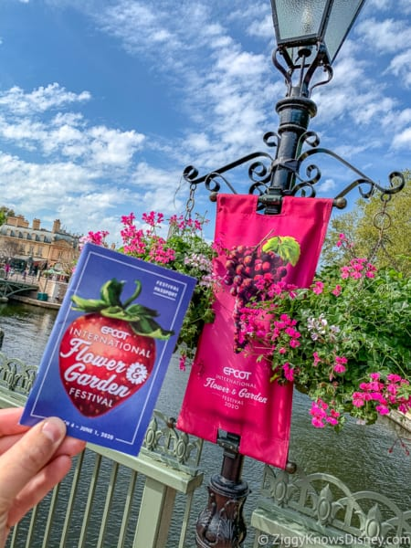 Epcot Flower and Garden Festival guide and pink flowers