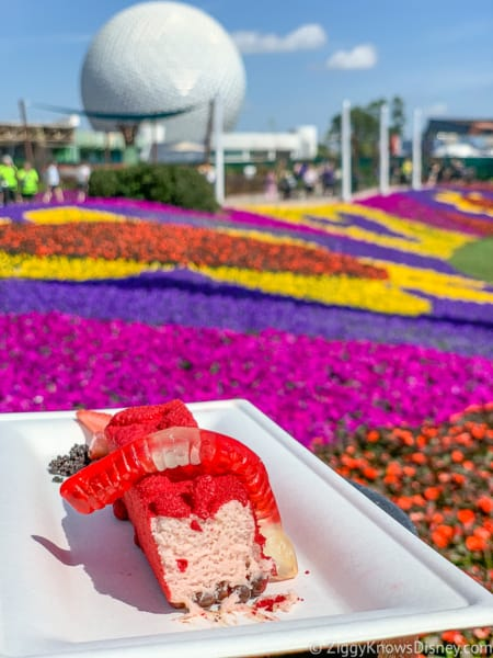 Strawberry Mousse with flowers and Spaceship Earth at Epcot Flower and Garden