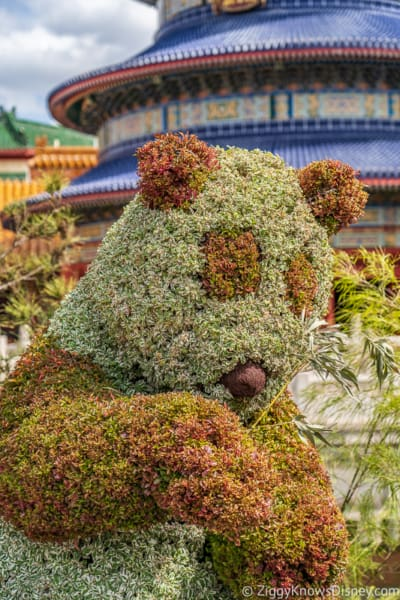 Panda Topiary Epcot Flower and Garden Festival