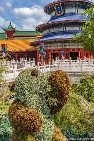 China Panda Topiary Epcot Flower and Garden Festival