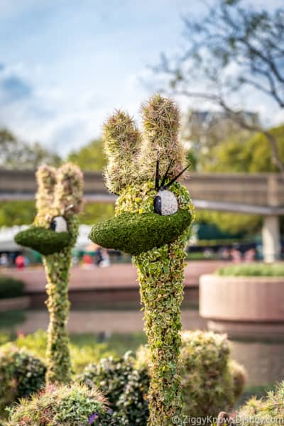 Ostrich Topiaries Epcot Flower and Garden Festival