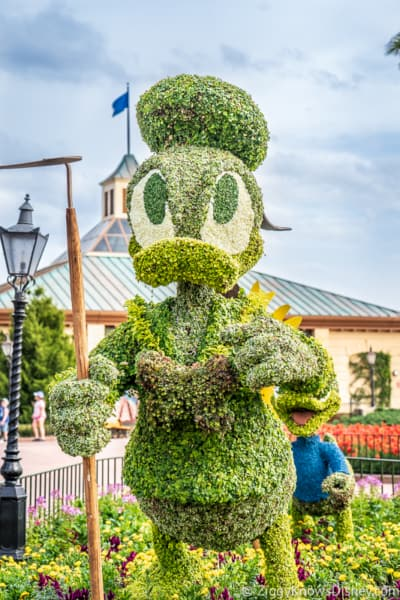 Donald Duck Farmer Topiary Epcot Flower and Garden Festival