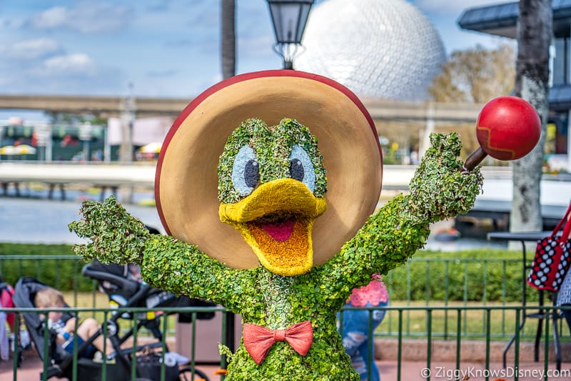 Donald Duck Mexico Topiary Epcot Flower and Garden Festival