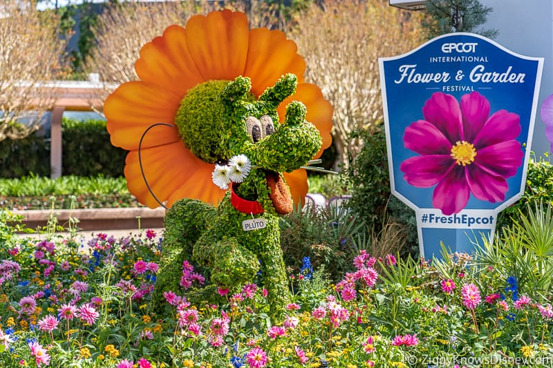 Pluto Topiary Epcot Flower and Garden Festival