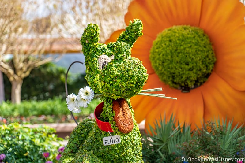 Pluto with flowers in mouth Topiary Epcot Flower and Garden Festival