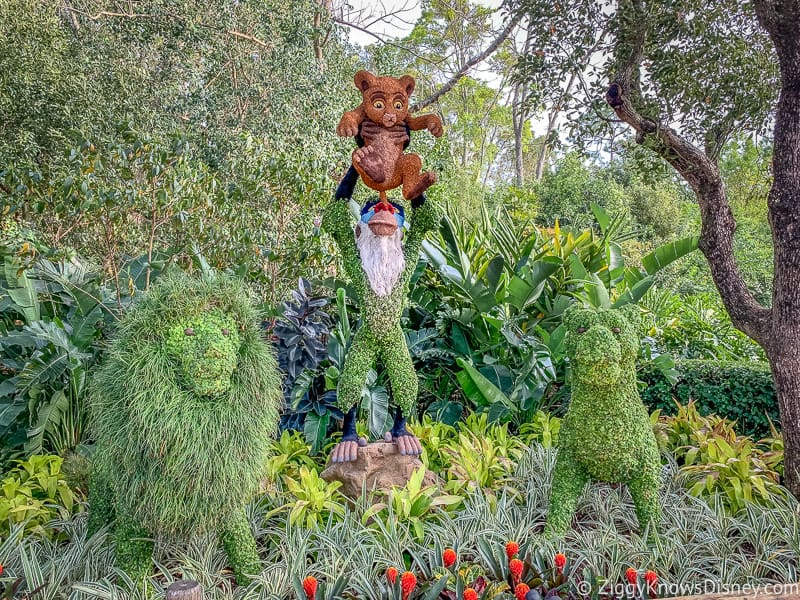 Lion King Topiaries Epcot Flower and Garden Festival