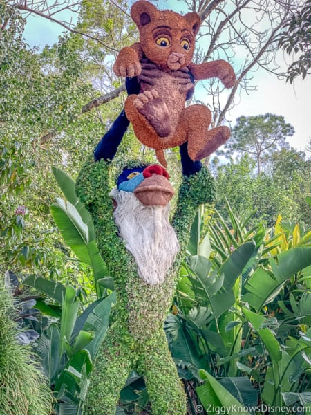 Rafiki and Baby Simba Topiary Epcot Flower and Garden Festival