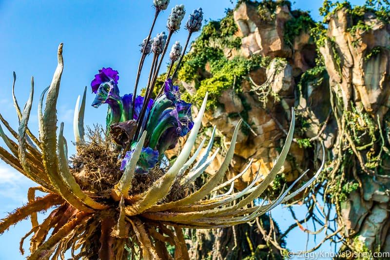 Plants in Pandora: The World of Avatar