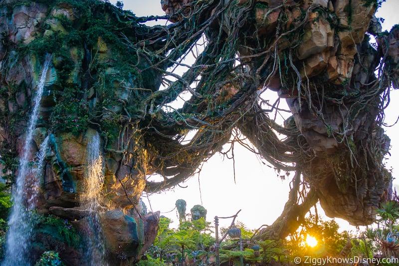 sunset in Pandora: The World of Avatar
