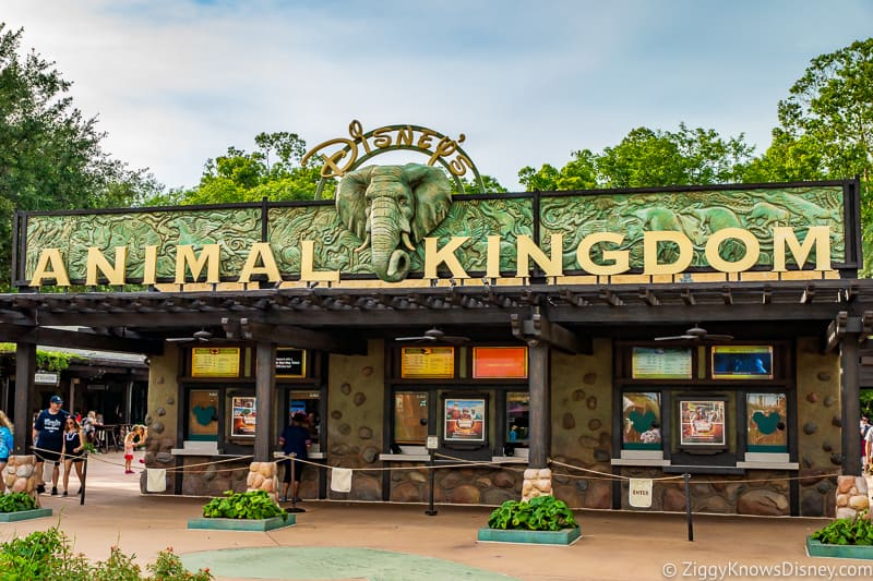 Animal Kingdom park entrance
