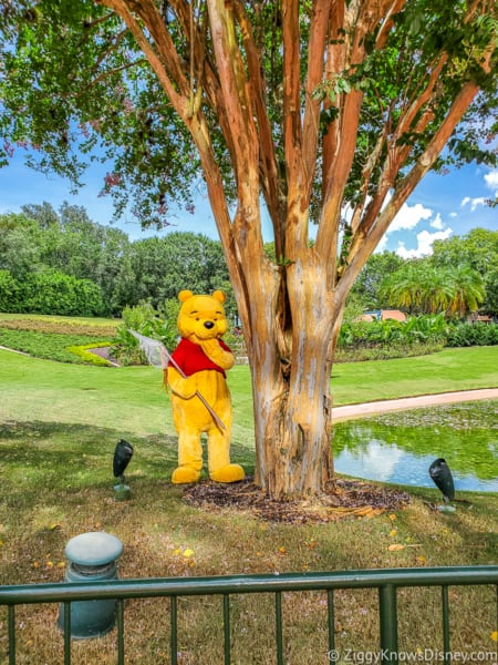 Winnie the Pooh Character EPCOT gardens