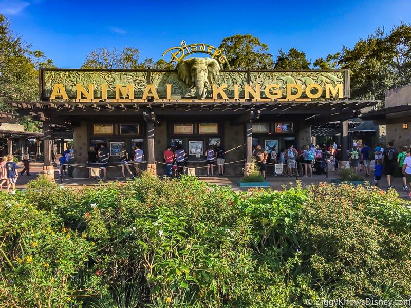 outside Disney's Animal Kingdom entrance