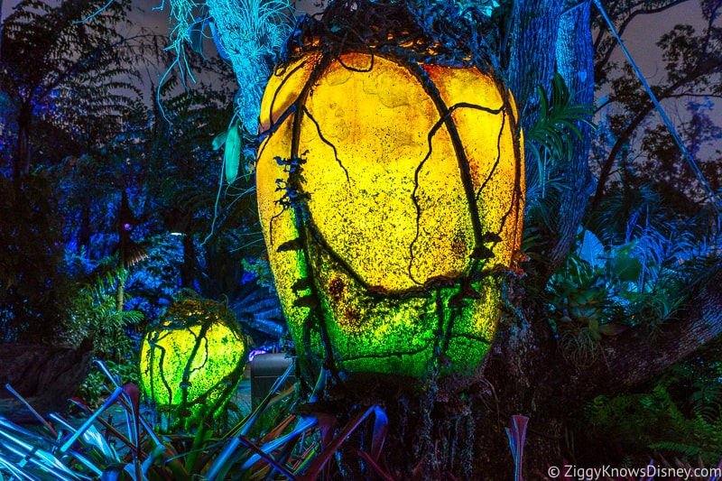 Lights at night in Pandora the World of Avatar