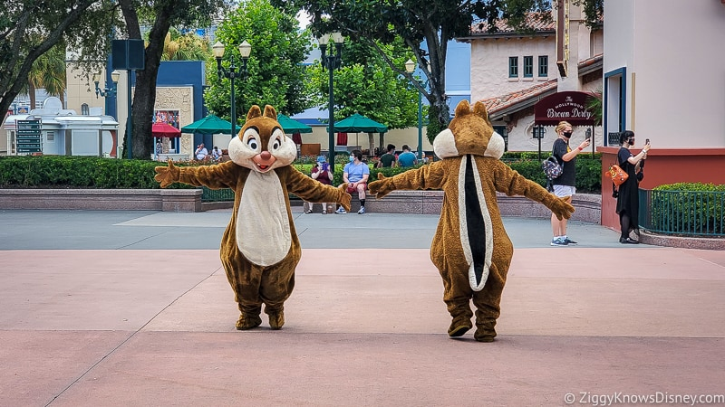Chip and Dale character motorcade Hollywood Studios