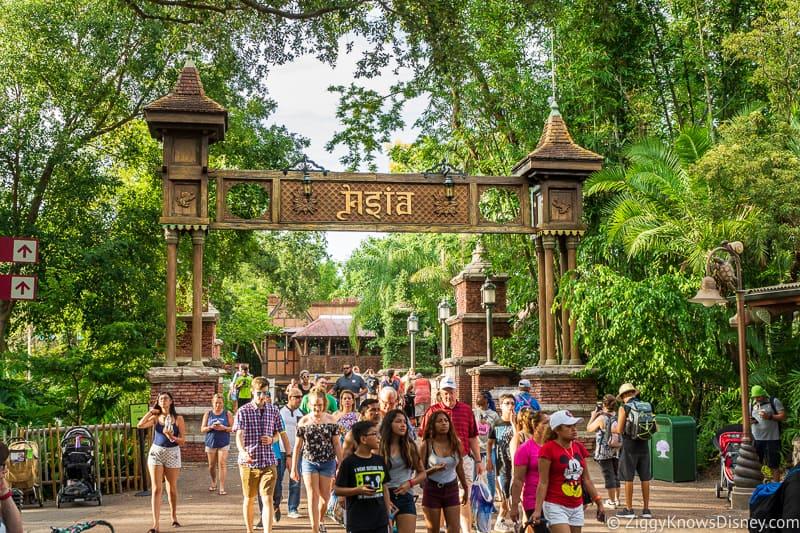 Asia Disney's Animal Kingdom