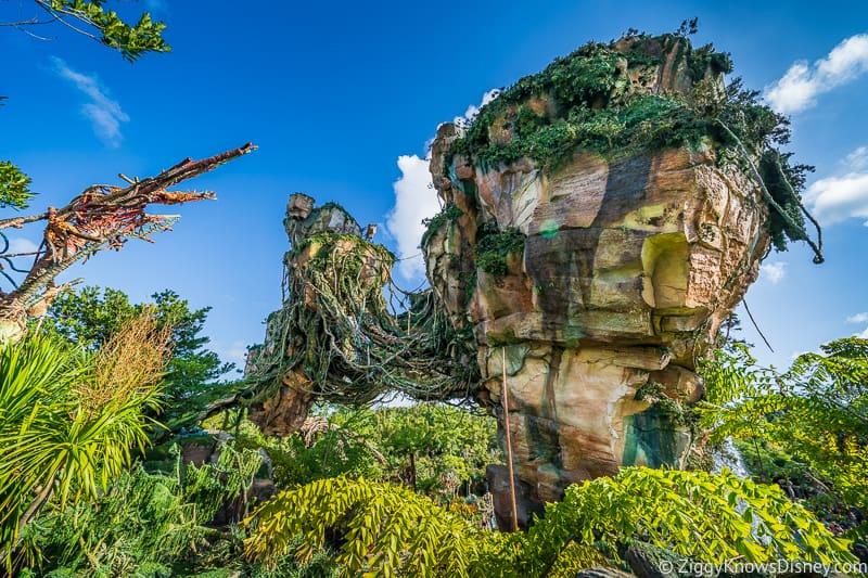 Floating Mountains Disney's Animal Kingdom Park