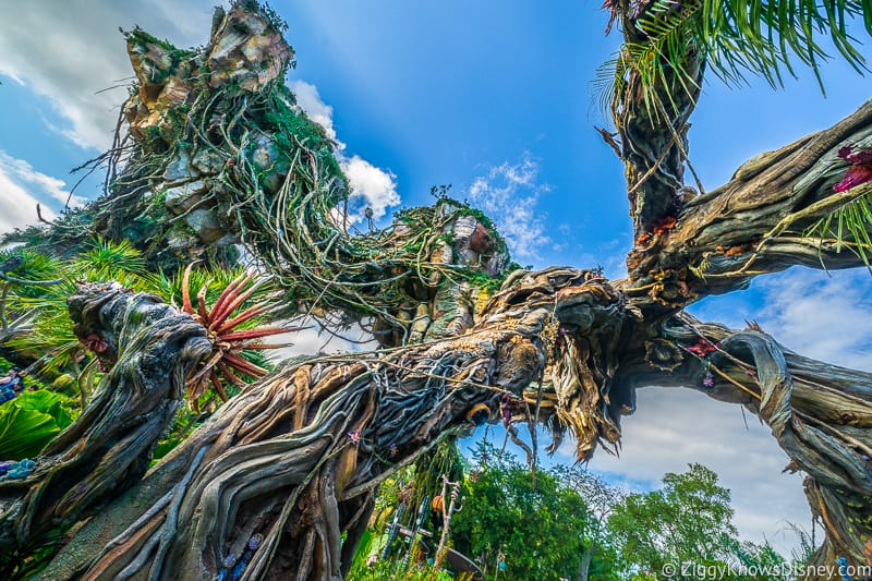 Under the floating mountains at Pandora