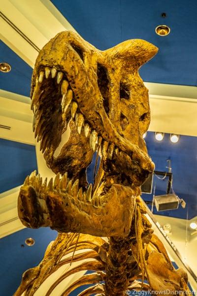 T-Rex skeleton Dinosaur ride