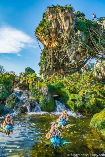 Pandora: The World of Avatar Disney's Animal Kingdom