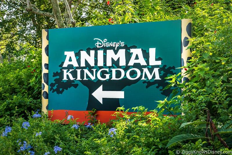 Disney's Animal Kingdom entrance sign